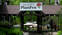170512_3007_NX1 Welcome to Teatown's PlantFest on May 12, 2017