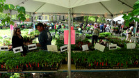 170512_3059_NX1 Teatown Volunteer Rudy Fasciani gives Vegetable Garden Advice at the 2017 PlantFest