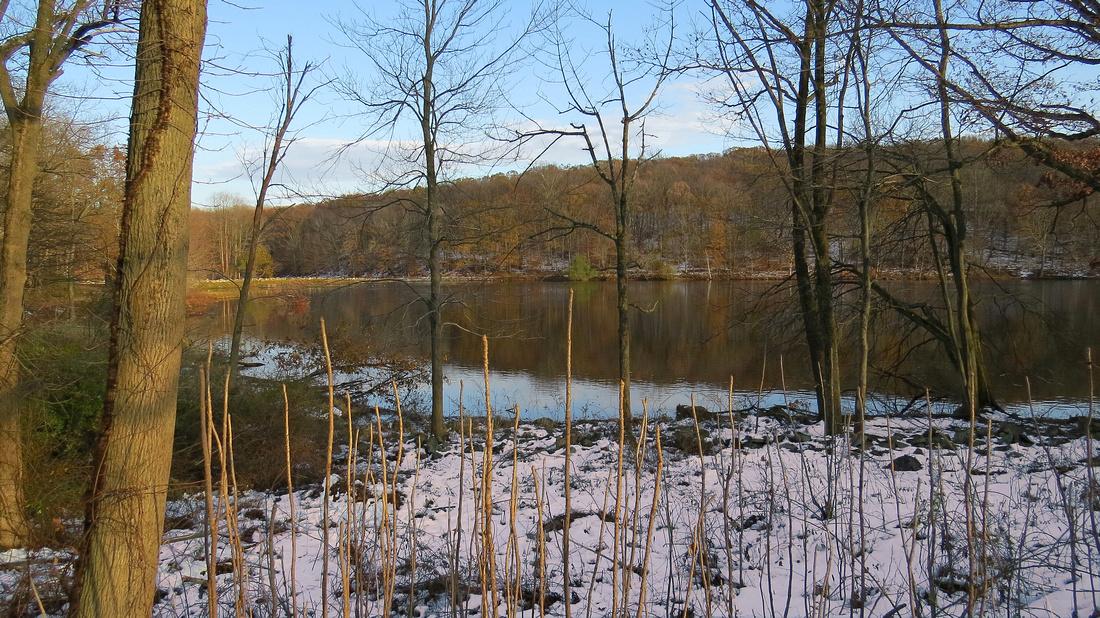 121109_0120_SX50 Swan Lake at Rockefeller Preserve