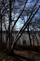 170113_0141_EOS M5 Croton Point in Early Winter 2017