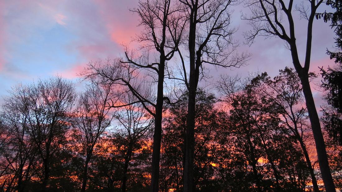 121108_0082_SX50 Autumn Sunset